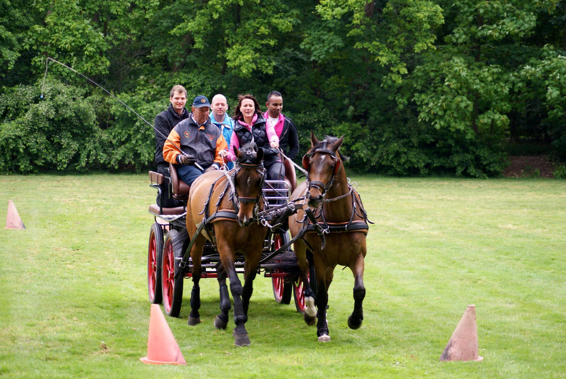 Workshop paarden mennen 36